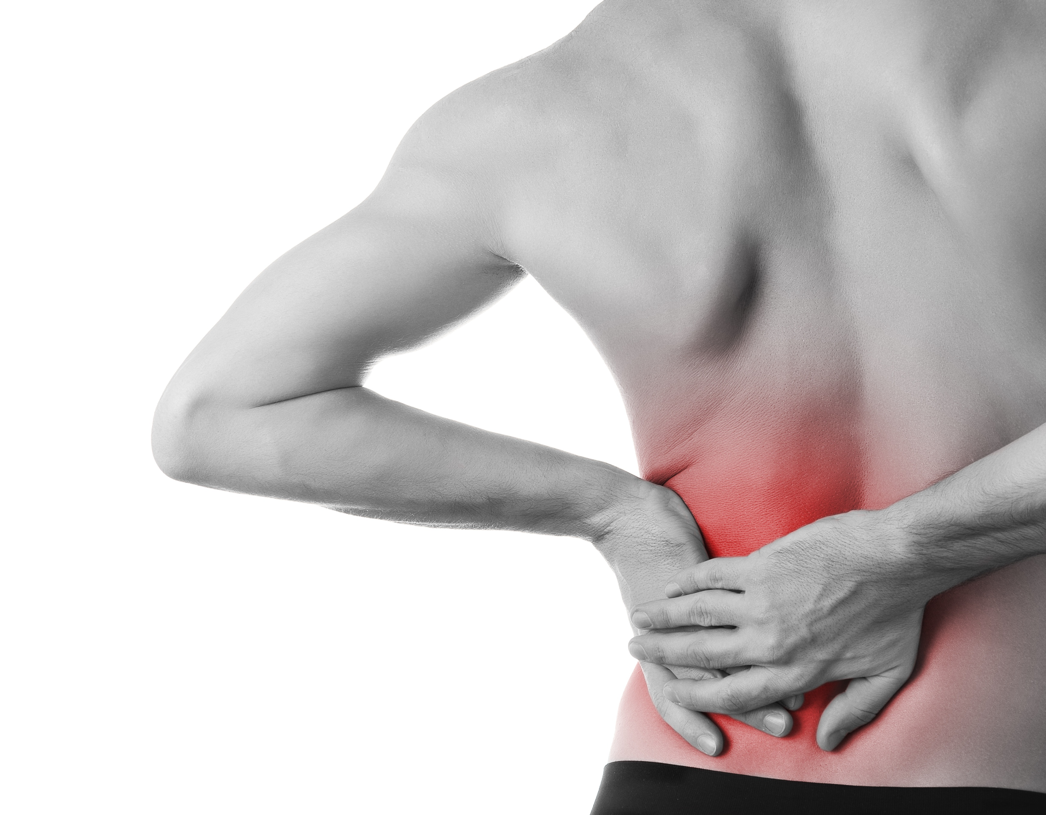 back pain assessed by health and wellness professionals